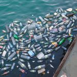 Dierenleed door plastic soup